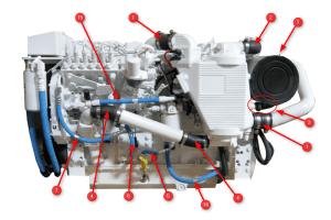 6BTA 59 330370 Diamond Engine Hoses  Seaboard Marine