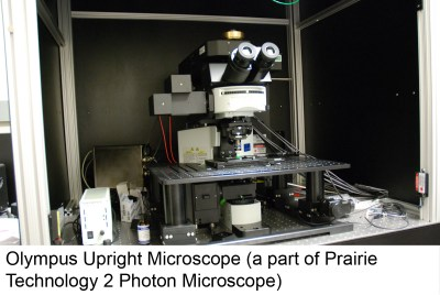 olymp_upright_2photon_14_4441798408_o