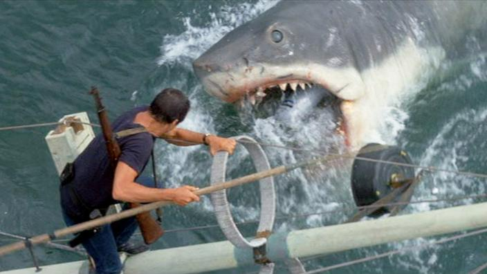 as jaws turns 44