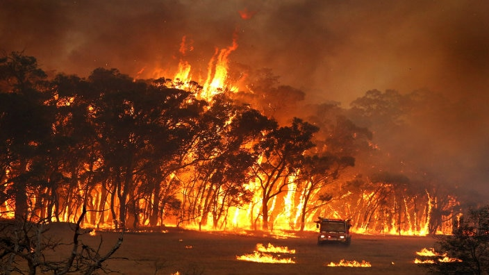 Remembering the Black Saturday bushfires a decade later  SBS Your Language