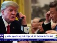 Ý Kiến Người Mỹ Gốc Việt Về TT Donald Trump
