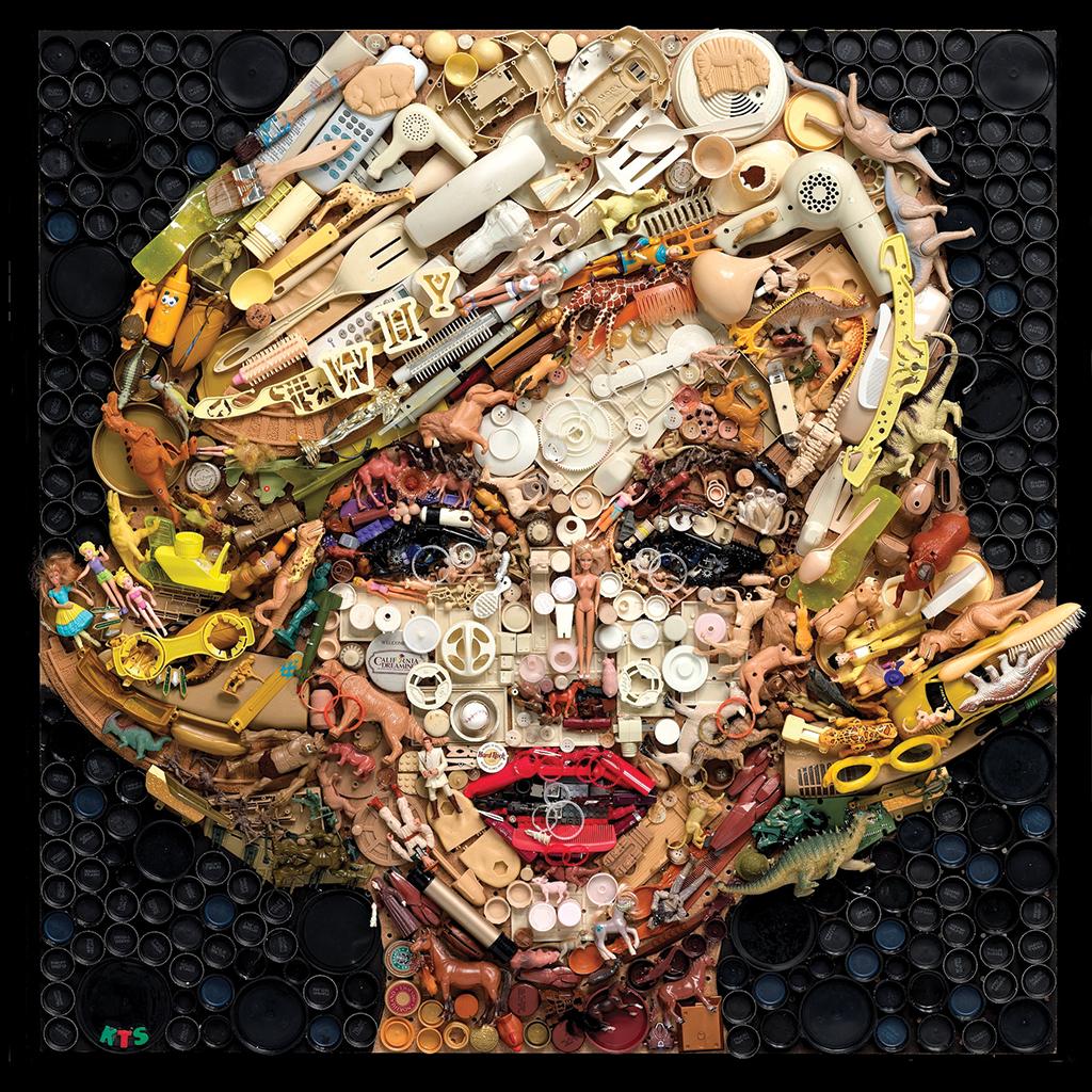 Alumna artist paints portraits with plastic  UofSC