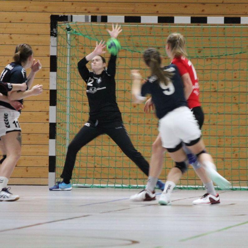 handball-f1_2019_pleichach_27