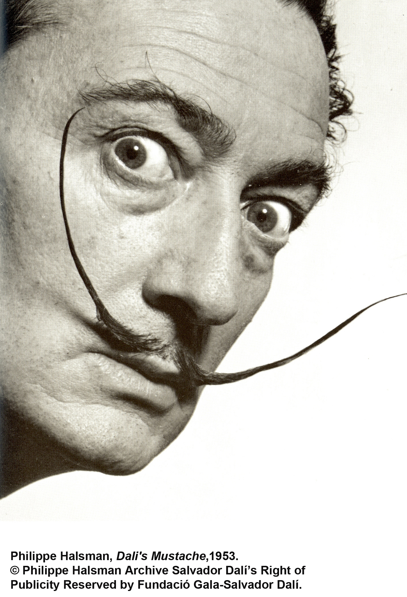 Behind The Mustache Of Dali S Late Work The Connector