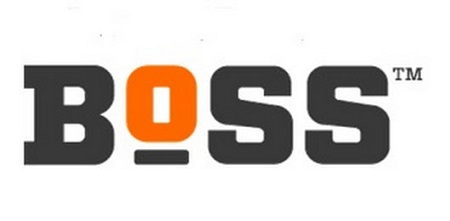 Large Boss Logo