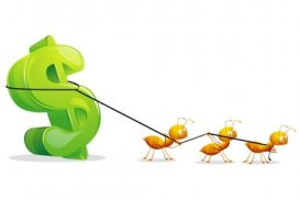 microniche affiliate marketing - small ant carrying big money