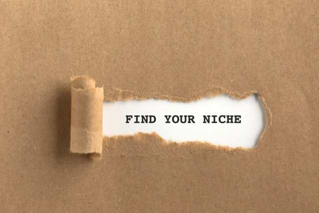 Find your niche - Why Do You Need A Micro Niche Affiliate Marketing Website?
