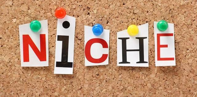 microniche website