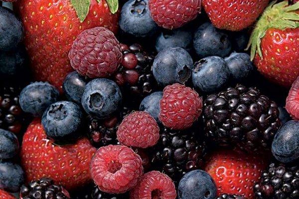 SCAN_Inteligencia-de-mercado_20200811_Vitafoods-combinación-de-negocios-de-Hortifrut-y-Alifrut