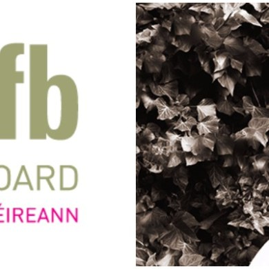 Lesley McKimm - Irish Film Board
