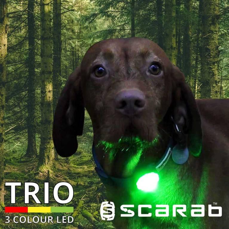 Scarab Beacon Trio