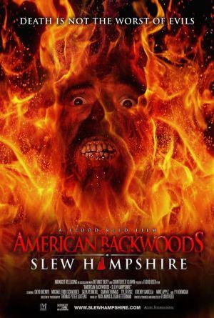 Slew Hampshire Fire