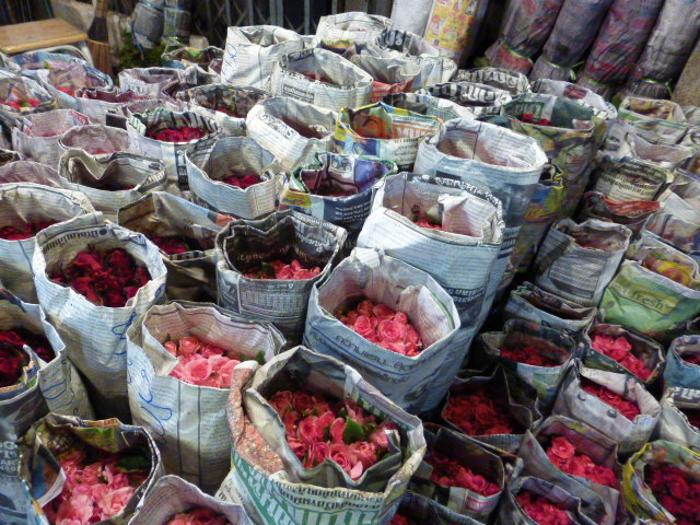 roses in the night time flower market