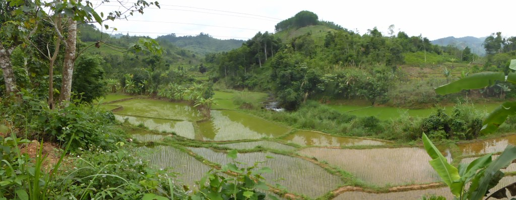 Central Highlands and Hoi An Easyriders Tour