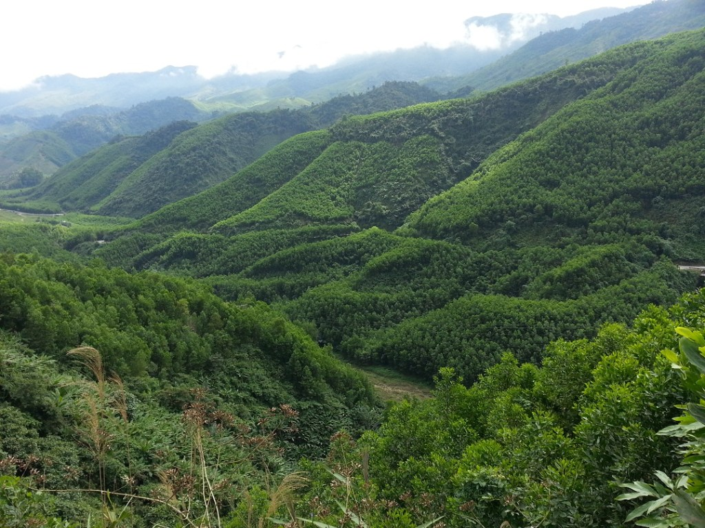 Central Highlands & Hoi An Easyriders Tour