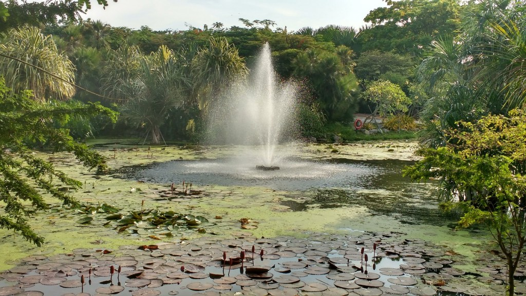 Budget things to do in Singapore - go to a park