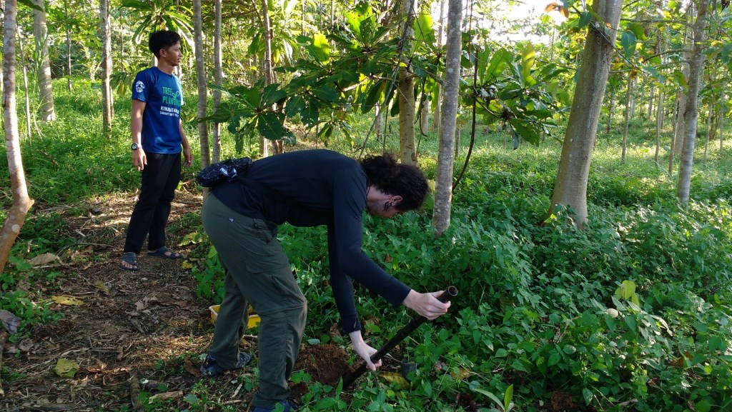 volunteer tree planting in the jungle