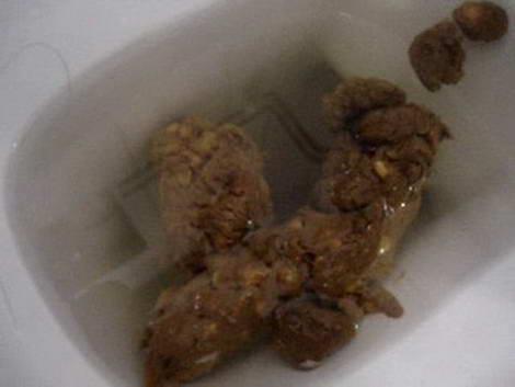 japanese panty poop