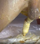 HUGOSCATBOY – SHIT SAUSAGE CONDOMS & CREAM SQUIRTING FROM ANUS 2019_09_12_10