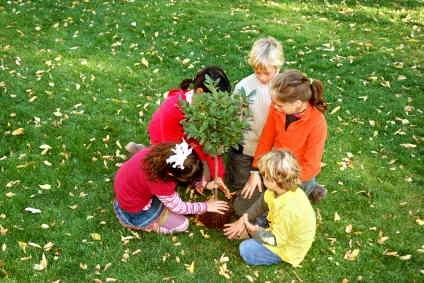 planting dedicating tree to loved one