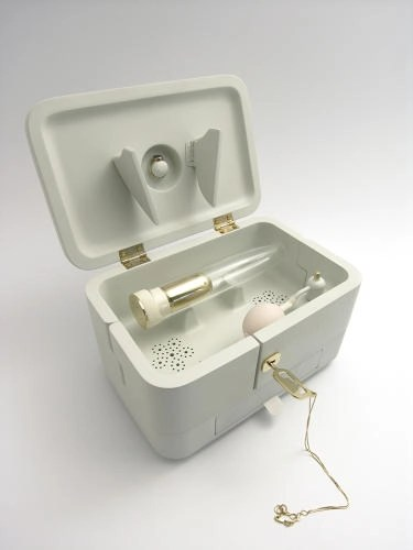 dildo ashes memory box