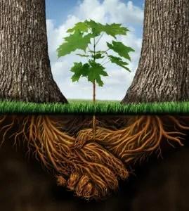 startups business insurance scotia new york