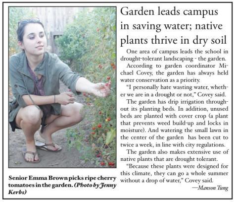garden graphic