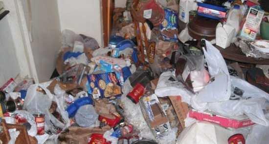 Minnesota Hoarding Cleanup