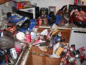 hoarding/gross filth