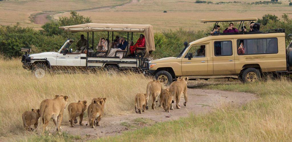 Masai Mara Big Five Kenya Safaris