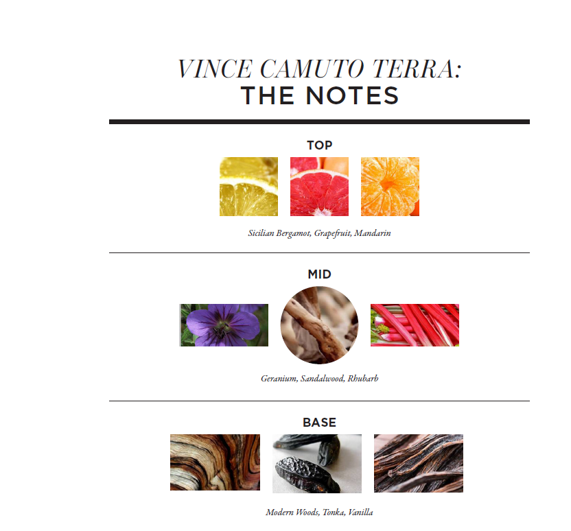 vince camuto terra notes