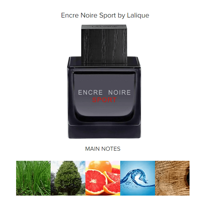 best workout colognes for men