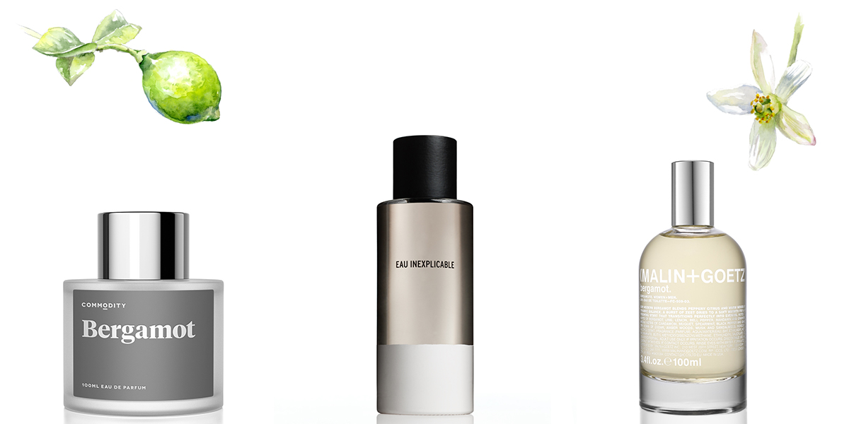 Fragrance Family Fun: Bergamot – the Essence of Spring