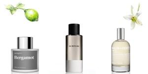 Bergamot perfumes
