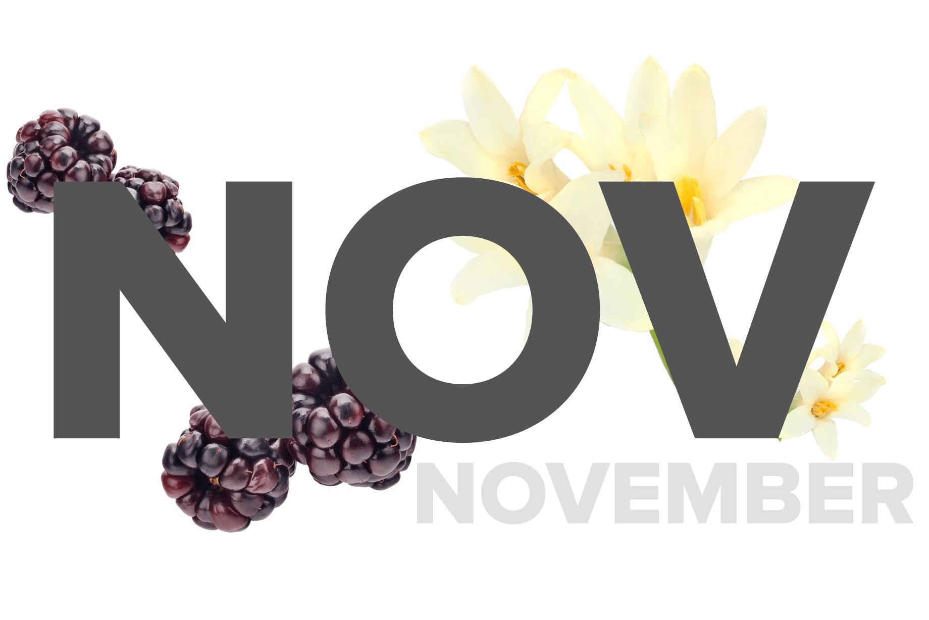 November Fragrances