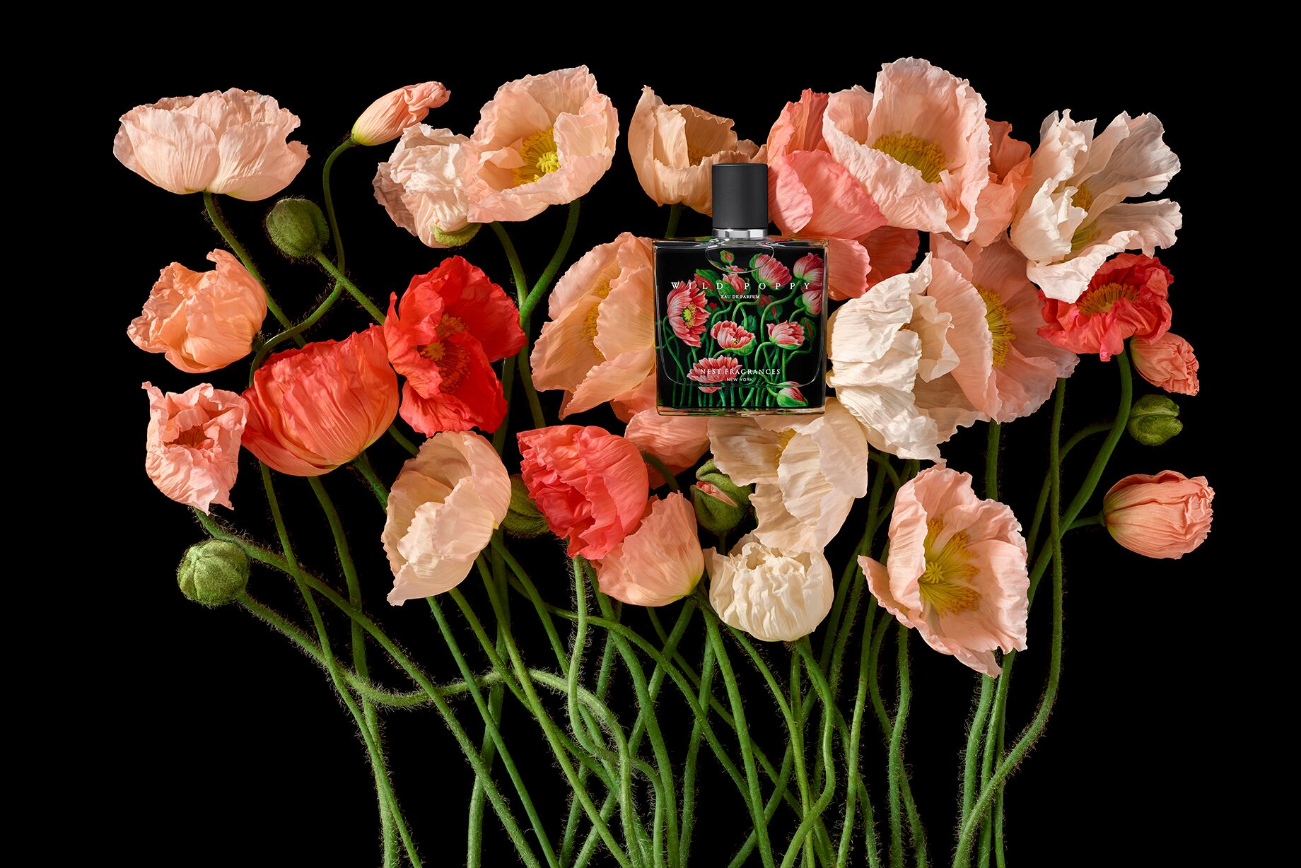 Perfume of the Month: Wild Poppy by Nest Fragrances