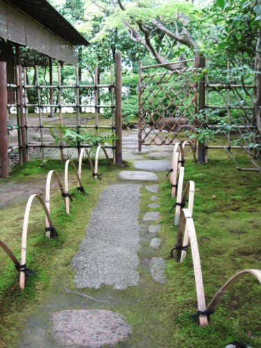 momijidani park6