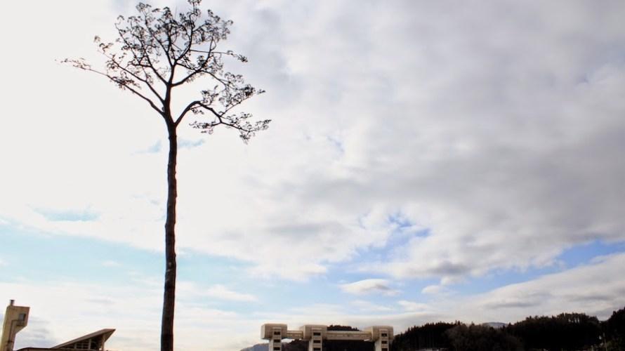 【岩手】震災4年後の奇跡の一本松を訪れました