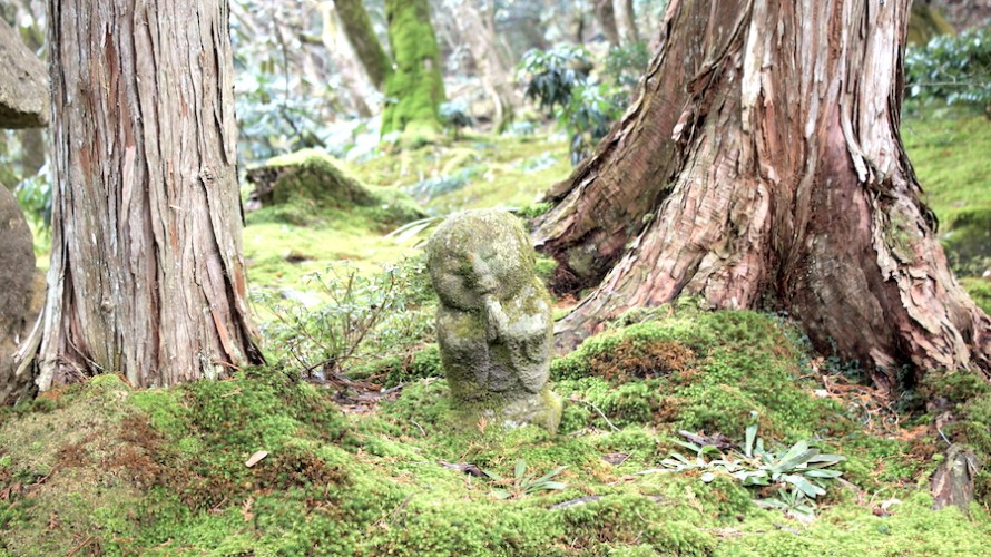 【京都洛北】愛らしいわらべ地蔵を見るために雨の大原三千院へ行ってきました