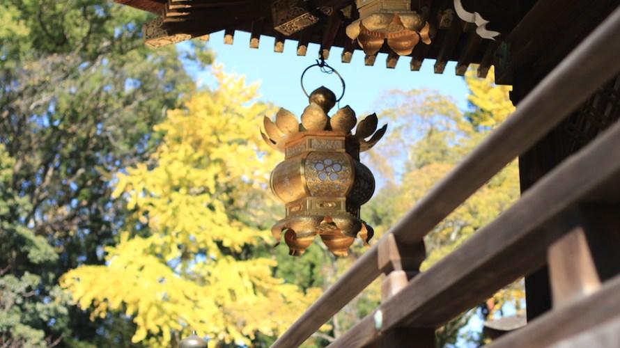 【京都洛中】秋の北野天満宮詣での際にはもみじ苑へもぜひ行ってみてください