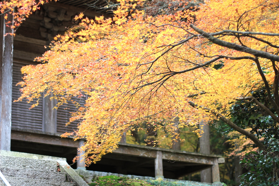 mantokuji main hall