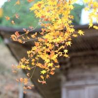 【福井】これを読めば小浜での1日の過ごし方がすべて分かります