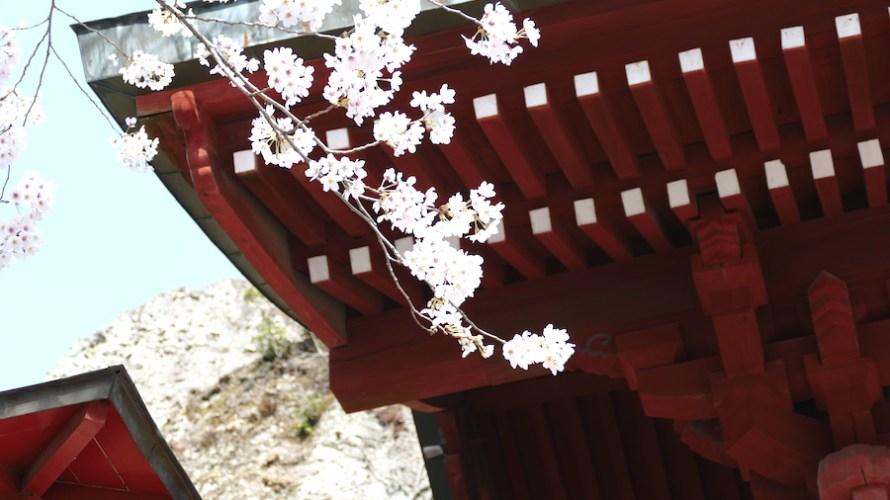 【栃木】宇都宮には個性的な寺院や幻想的なスポットがあって日光よりずっと楽しいよ!