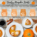 Scentsy Pumpkin Scents Shop Pumpkin Candle Scents
