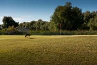 SCGA.org | Furnace Creek Golf Course | SCGA