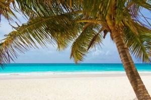 Vacation Pay