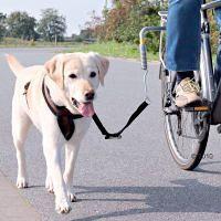 Fahrrad Halterung Schäferhund