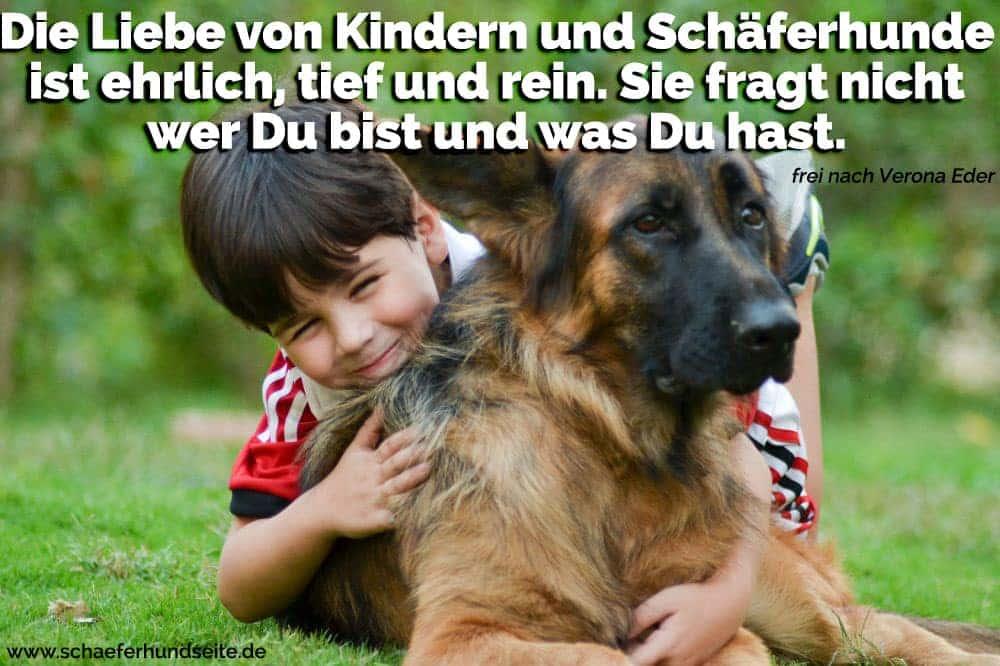Der Junge umarmt ihren Schäferhund