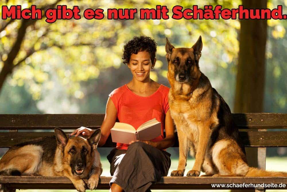 Eine Frau liest ein Buch mit ihren Schäferhund