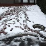 本社前を、社長自らせっせと雪かき!